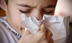 Vhodná podlaha pro alergika